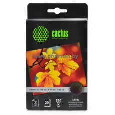 Фотобумага Cactus 10x15, 180 г/м2, 50 л., односторонняя глянцевая  (CS-GA618050)